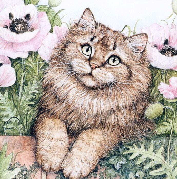 Дебби Кук и её пушистые рисунки 7