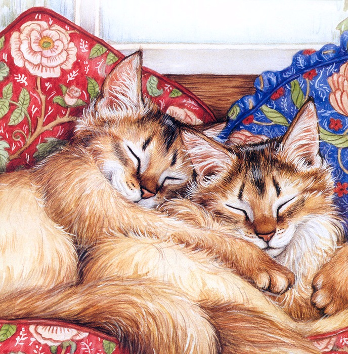 Дебби Кук и её пушистые рисунки 9
