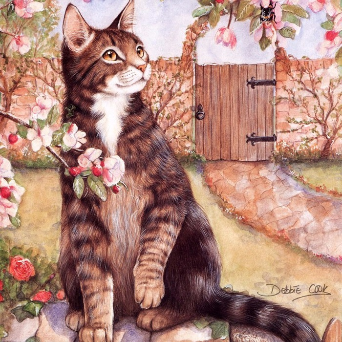 Дебби Кук и её пушистые рисунки 13