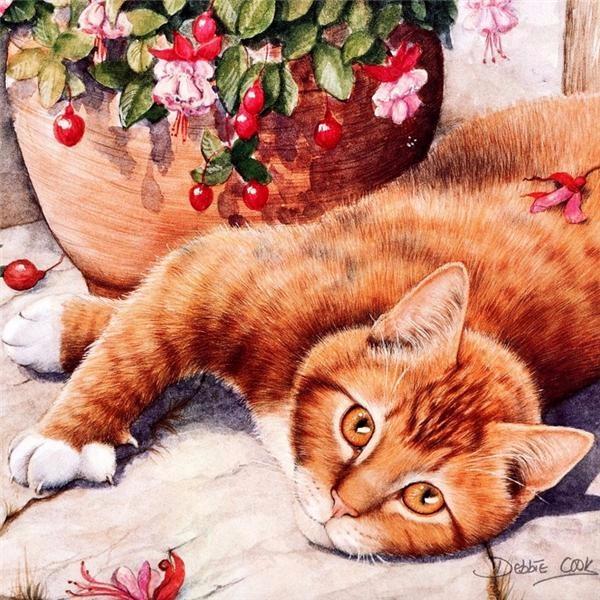Дебби Кук и её пушистые рисунки 15