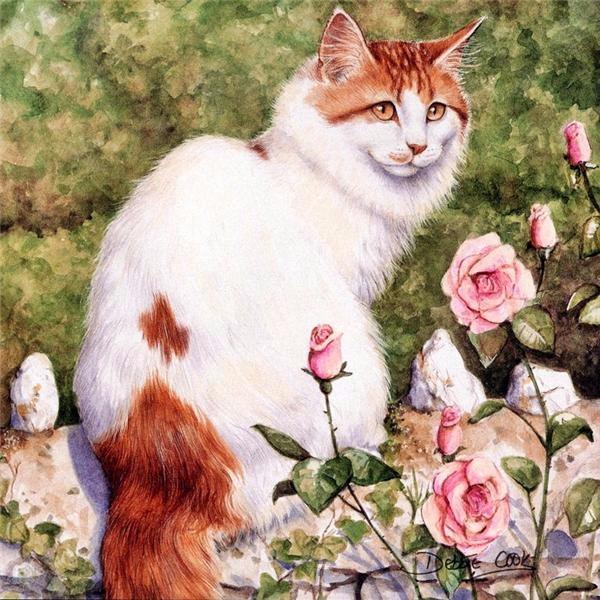 Дебби Кук и её пушистые рисунки 17