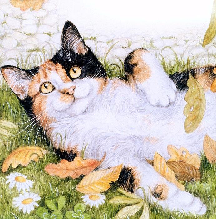 Дебби Кук и её пушистые рисунки 19