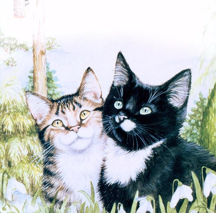 Дебби Кук и её пушистые рисунки 20