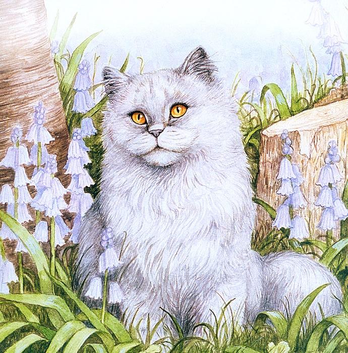 Дебби Кук и её пушистые рисунки 21