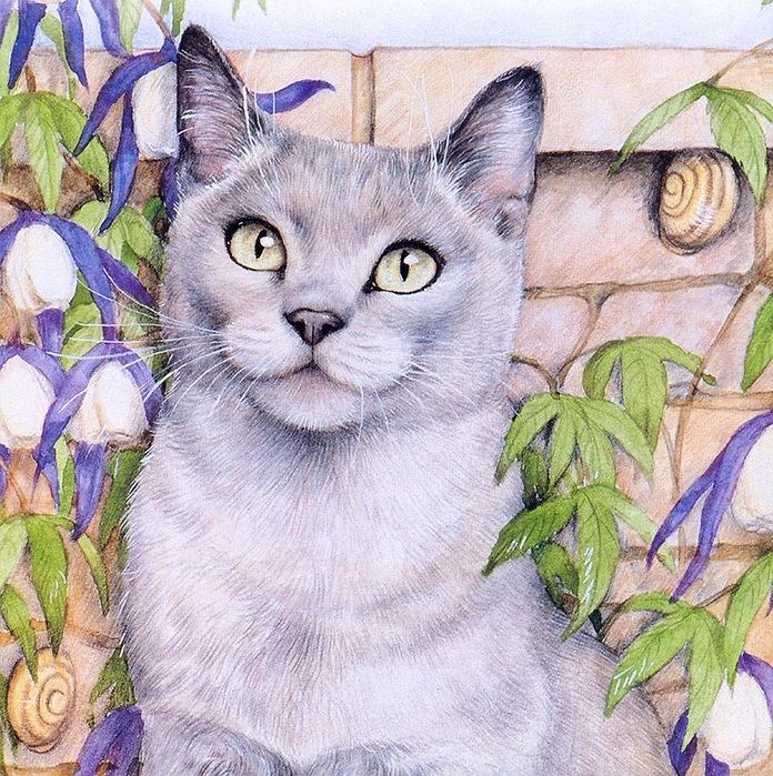 Дебби Кук и её пушистые рисунки 22