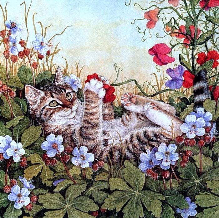 Дебби Кук и её пушистые рисунки 26
