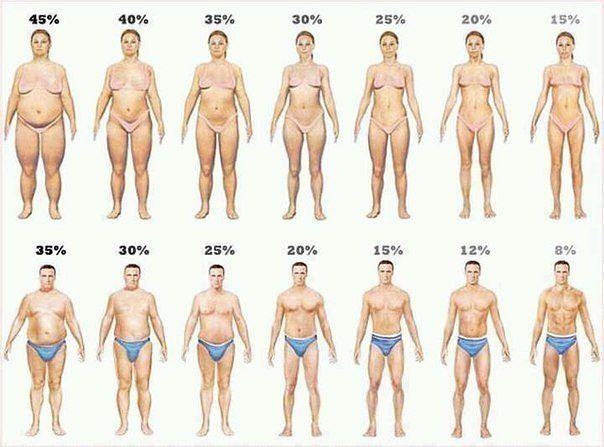 % жира