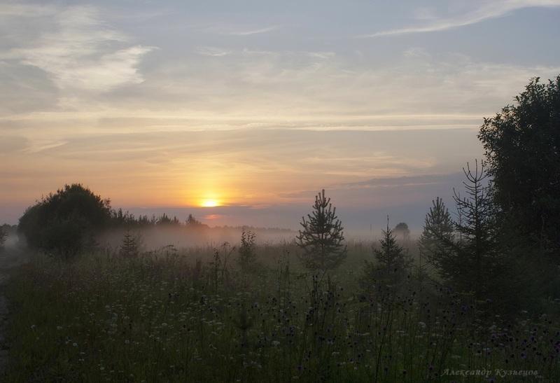 Туман за околицей