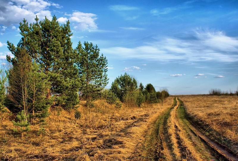 Дорога к деревням