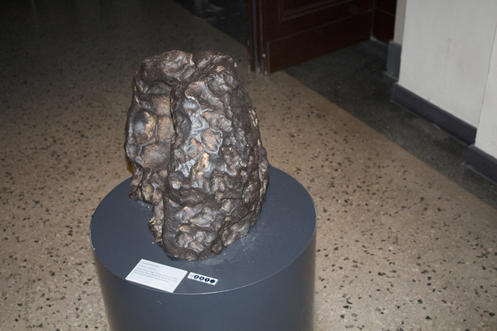 Музей Естествознания Берлин (7)