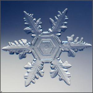 065 снежинка 06