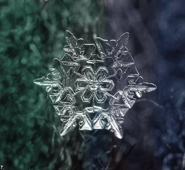 067 снежинка 05