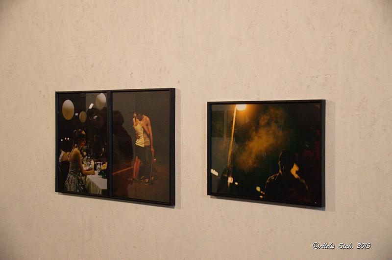 фотовыставка 2015 037
