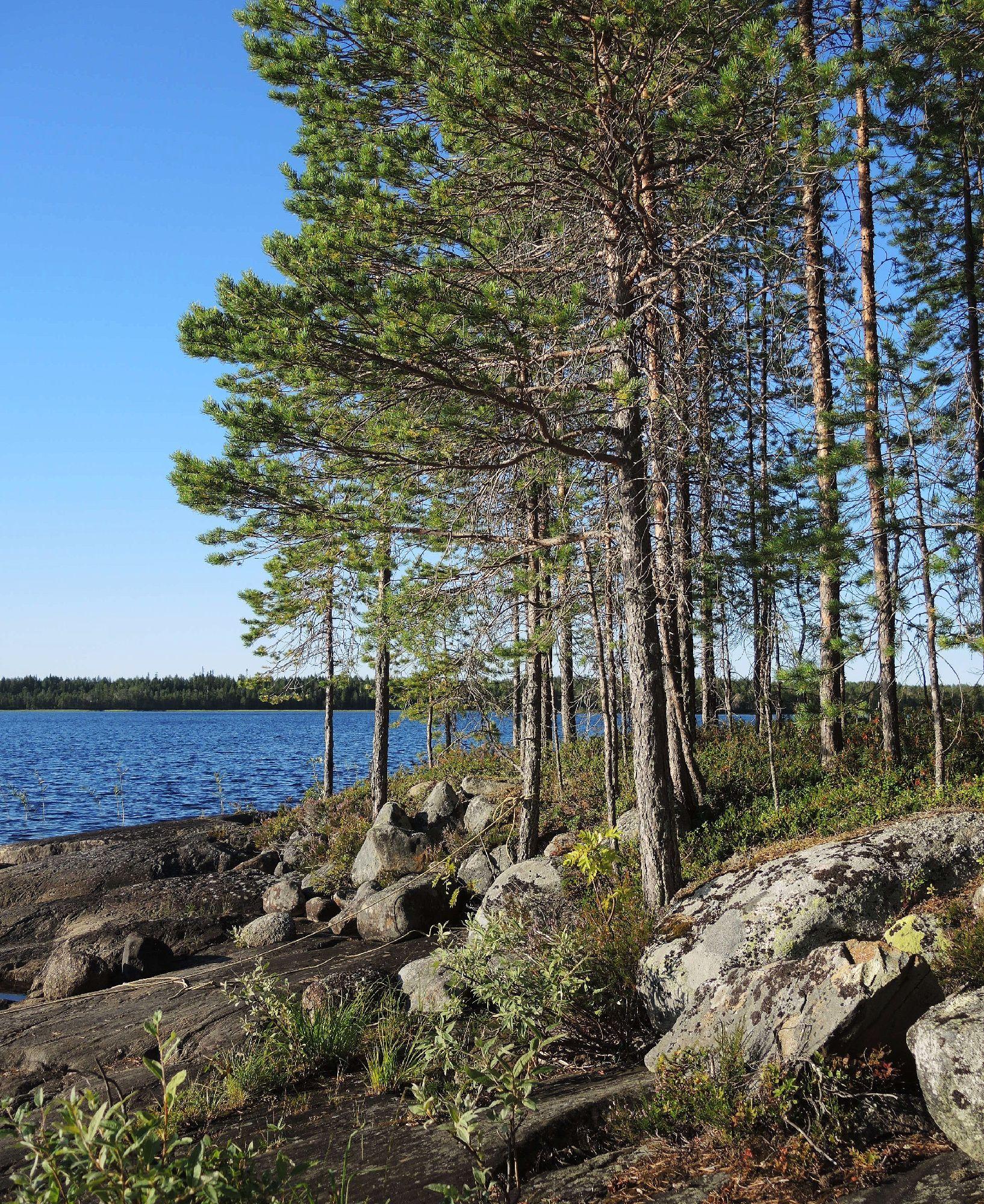 Синь неба, синь озера