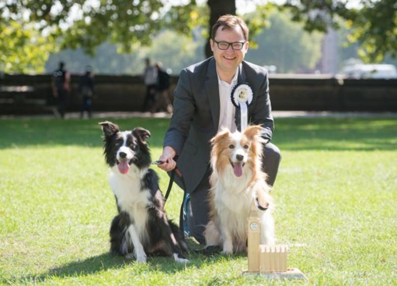 Фото: ПА / Пограничные колли депутата Алекса Норриса Корона (слева) и Бумер были прошлогодними победителями Вестминстерская собака 2018 года /