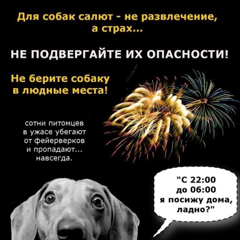 Картинка: вконтакте24.рф