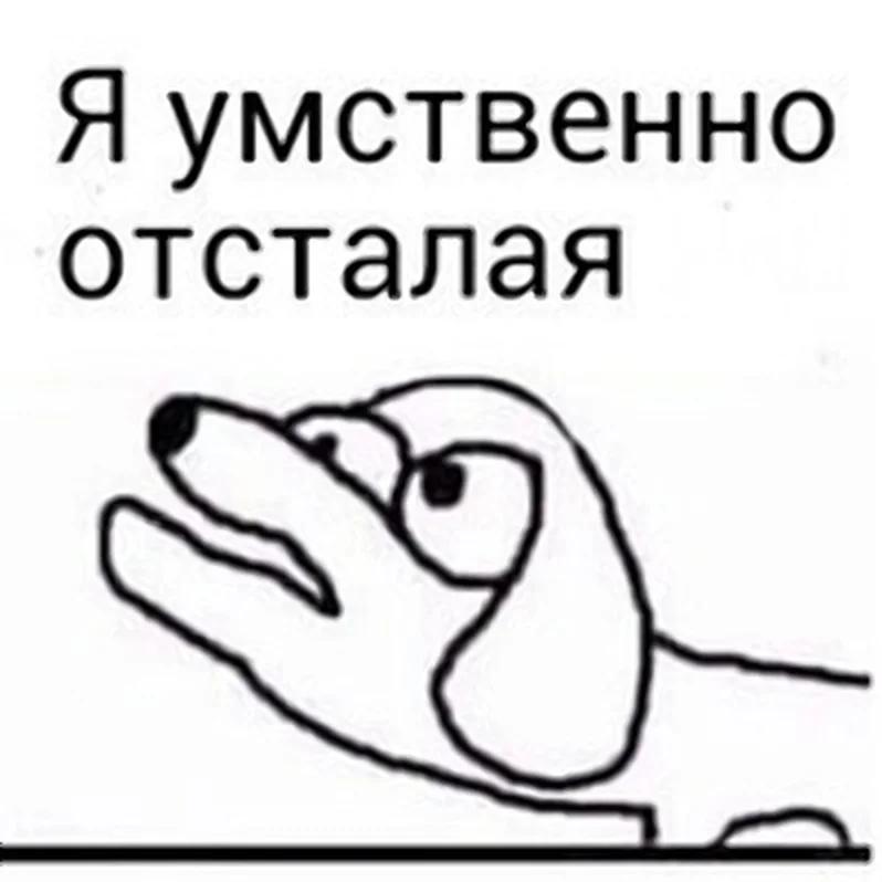 Картинка: vk.com
