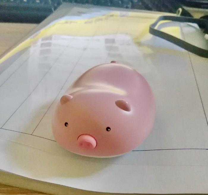 История со свиньей