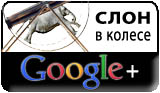 Слон в колесе в Google+