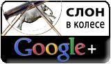 Слон в колесе в Google+