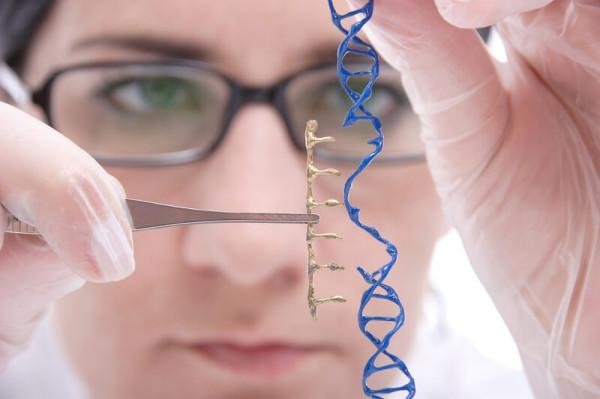 Опасности генной инженерии: с людьми лучше повременить