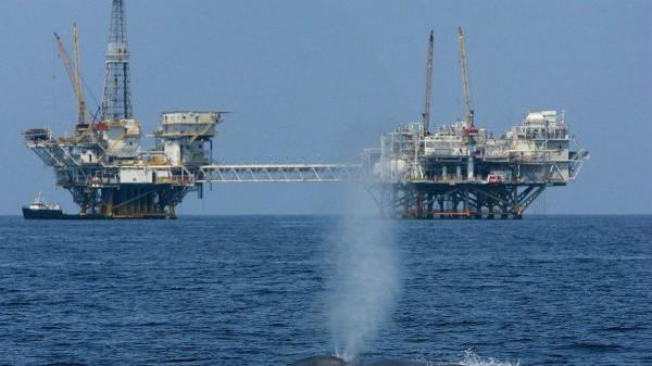 Последний выдох нефтяного кита