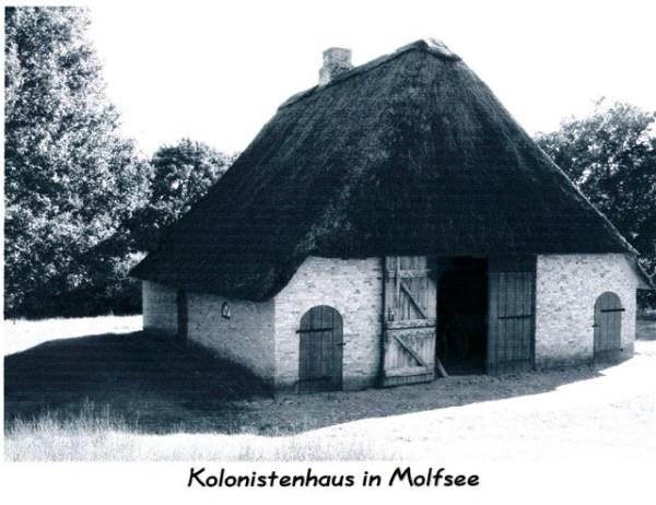Датские колонисты
