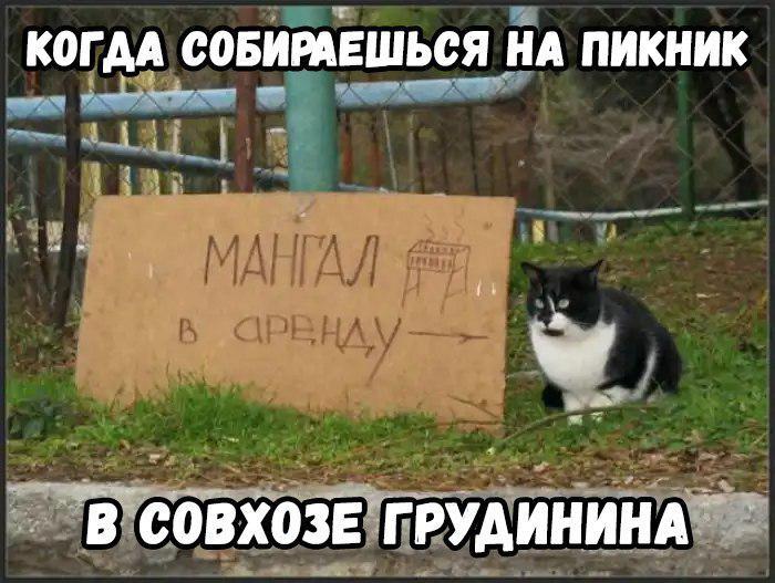 Паша хочет в ТОП