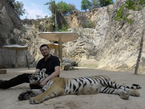 Обнимаю тигра в Tiger Temple
