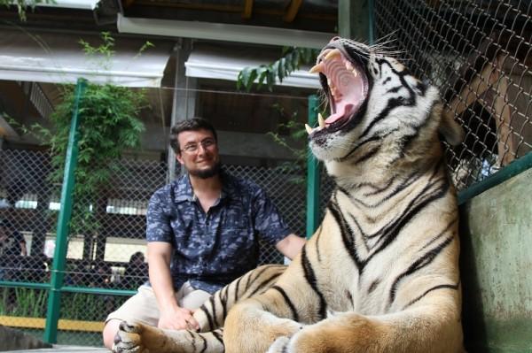 «Королевство тигров», Пхукет