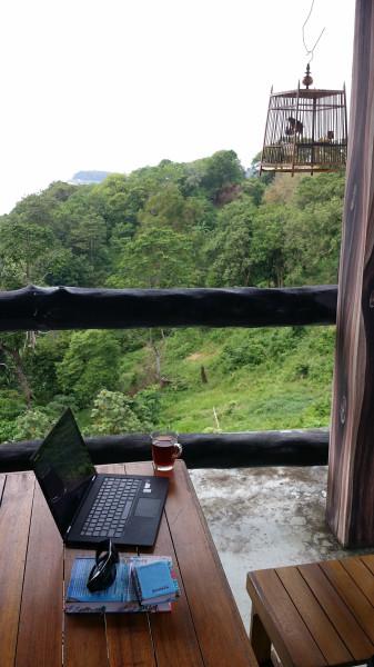 Моё рабочее место - в кафе на горе с видом на джунгли и необитаемый остров