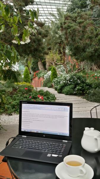 Моё рабочее место - кафе в Gardens by the Bay, ботаническом саду рядом с отелем Marina Bay Sands в Сингапуре