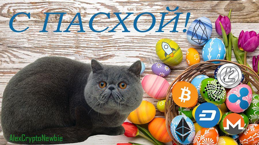 Биткоин-котики поздравляют с Пасхой