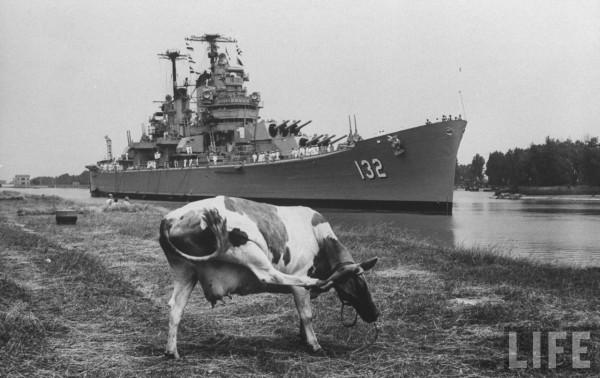 USS Macon_Cow