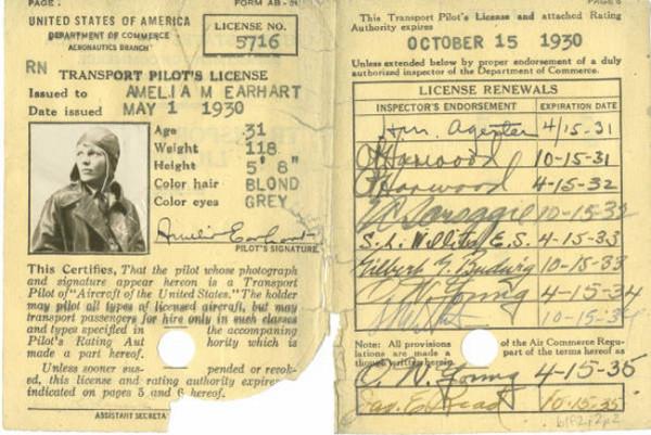 Amelia's License