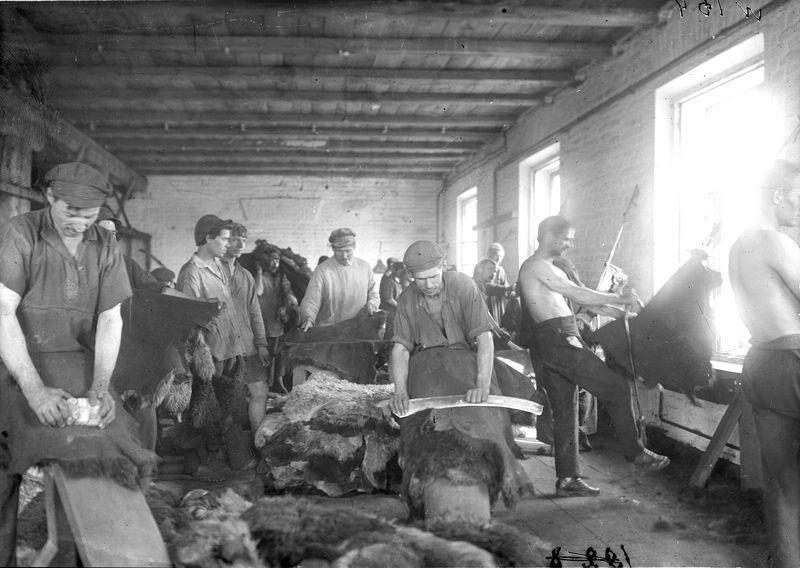 Овчинно-шубный завод. В цехе 1925-30. 1