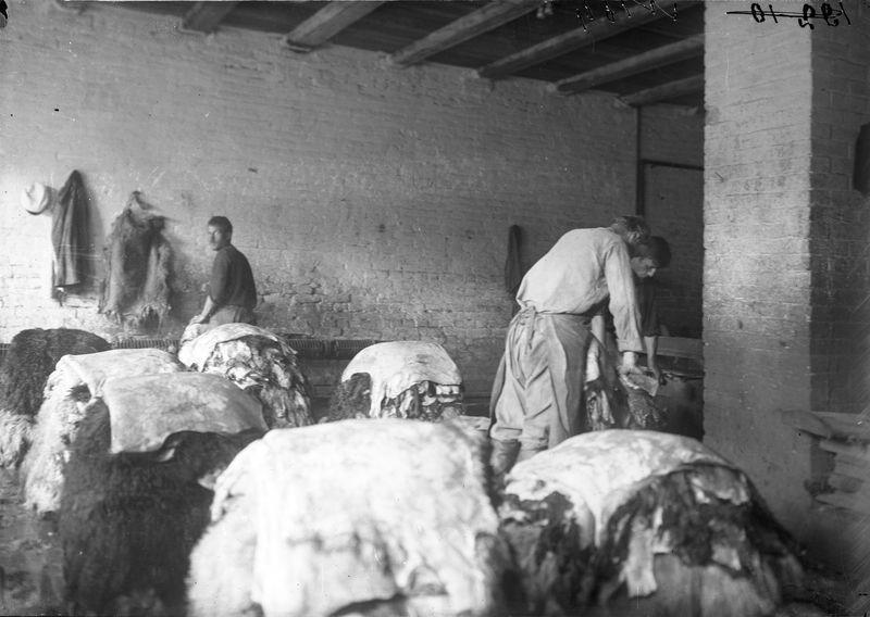 Овчинно-шубный завод. В цехе 1925-30