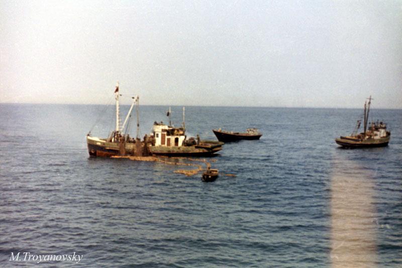 Sahalin_44a