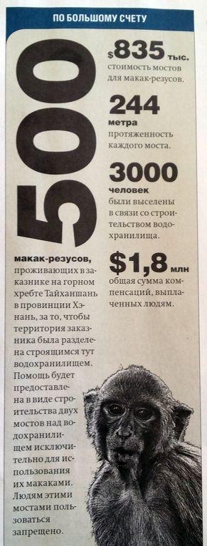 vlast_500makak