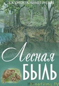 lesnaya_byl