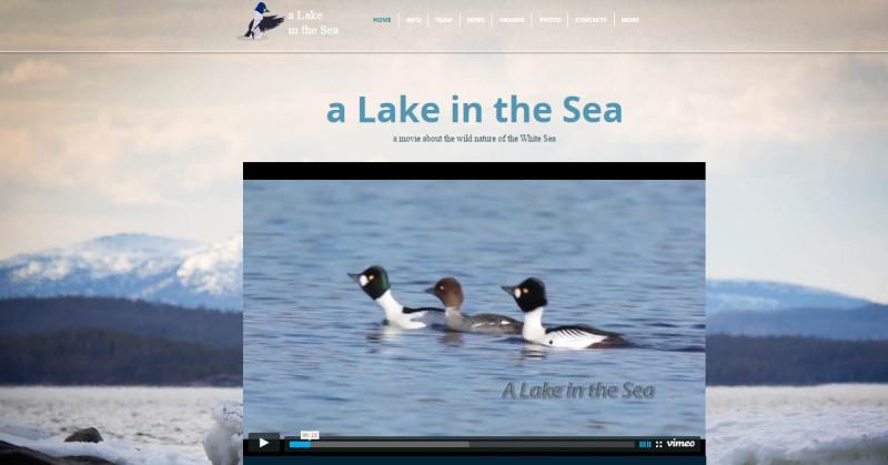 lake_sea