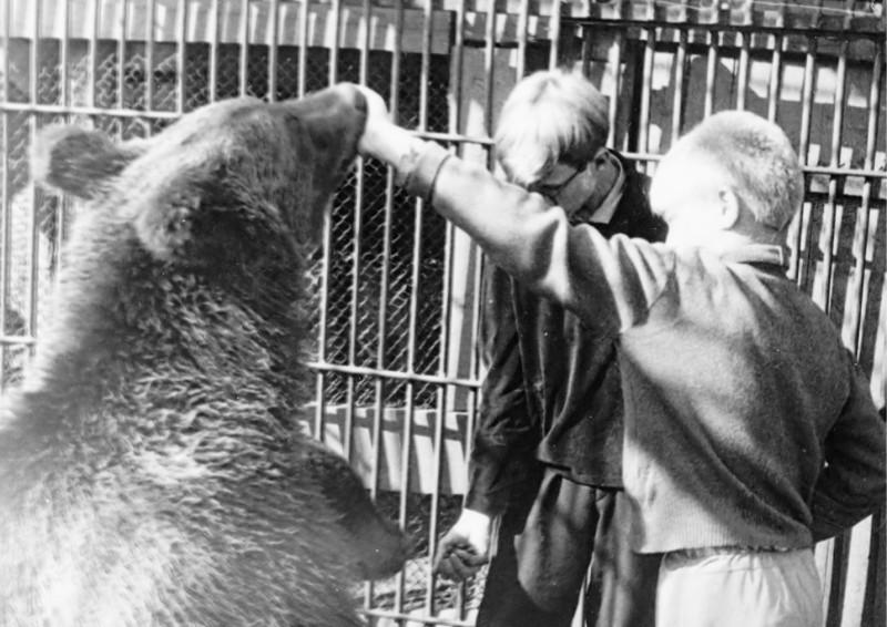 медвежатник заповедника 1970 год, Миша Герасимов и Гена Александров, юннаты_ Евгения Хлызина