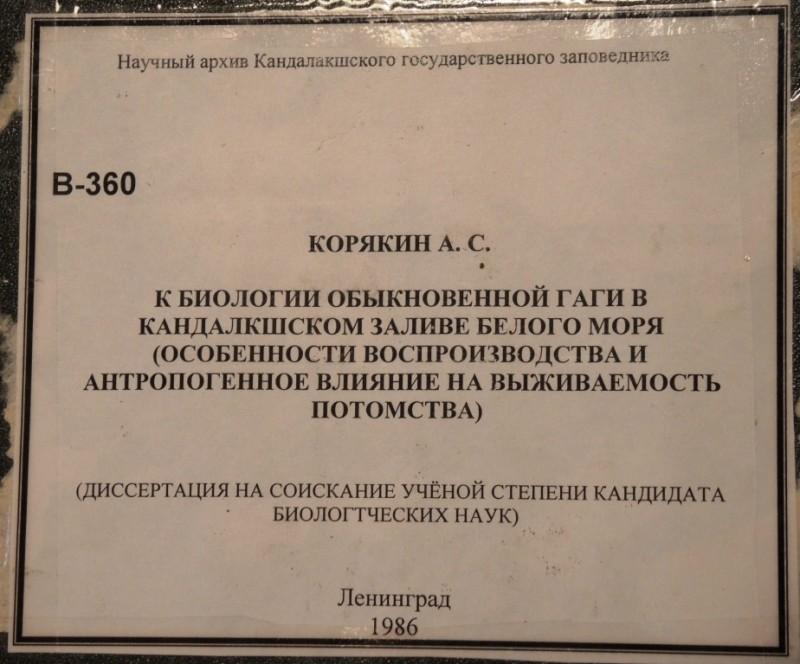DSCN6428_1