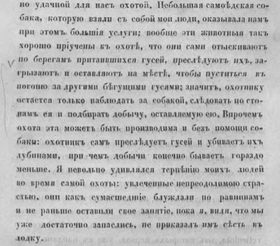 шренк_258