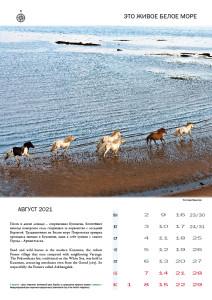 Белое море_2021-2022_010