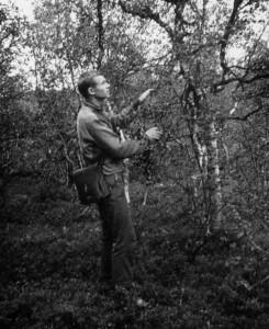 1963.07.02_Tundra_pie_Murmanskas_1