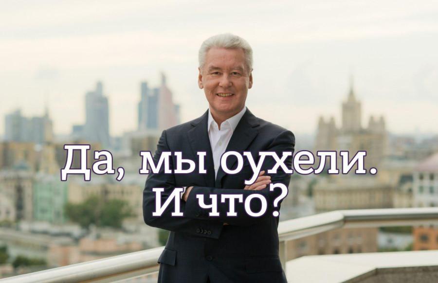 Собянин1