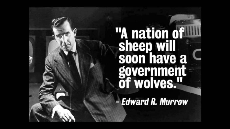 нация овец