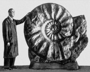 paleo-pic-ammonit-parkp-3-da