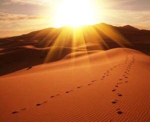 Бедуин 1.jpg